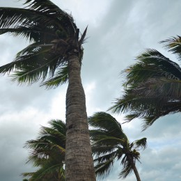 Creating a Hurricane Preparedness Plan for Your Club